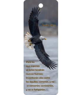 3D bookmark ( Eagle)